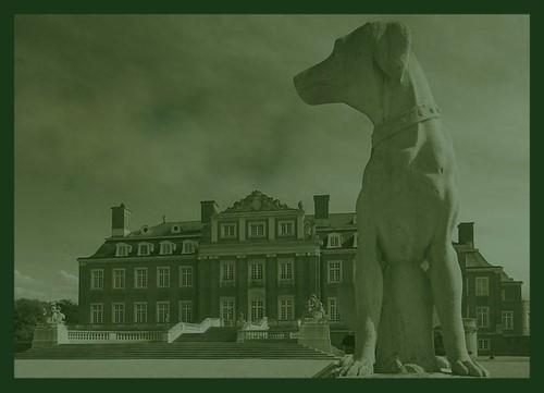 Hundebedarf Vom Hundemantel Bis Zum Premium Hundefutter Von Dogscastle