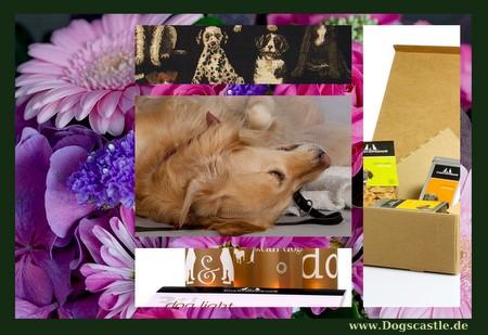 tierische geschenke dogscastle. Black Bedroom Furniture Sets. Home Design Ideas