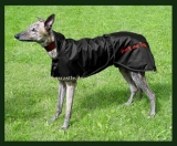 Back on Track Greyhound Coat